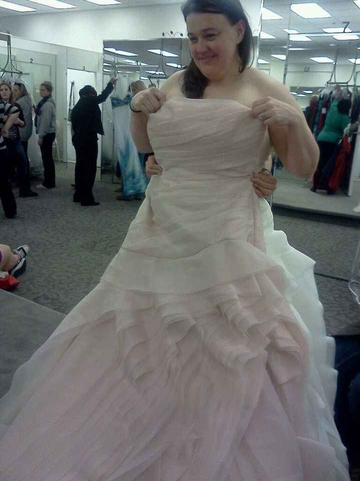 "Help Me ""Say Yes to the Dress"" PICS"