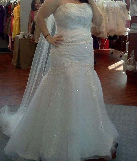 Alfred Angelo Brides... let's see your dresses!