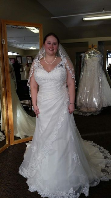 Wedding Gown Alterations 3