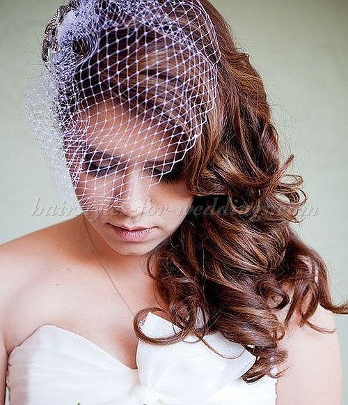 Hair style for Birdcage Veil 2