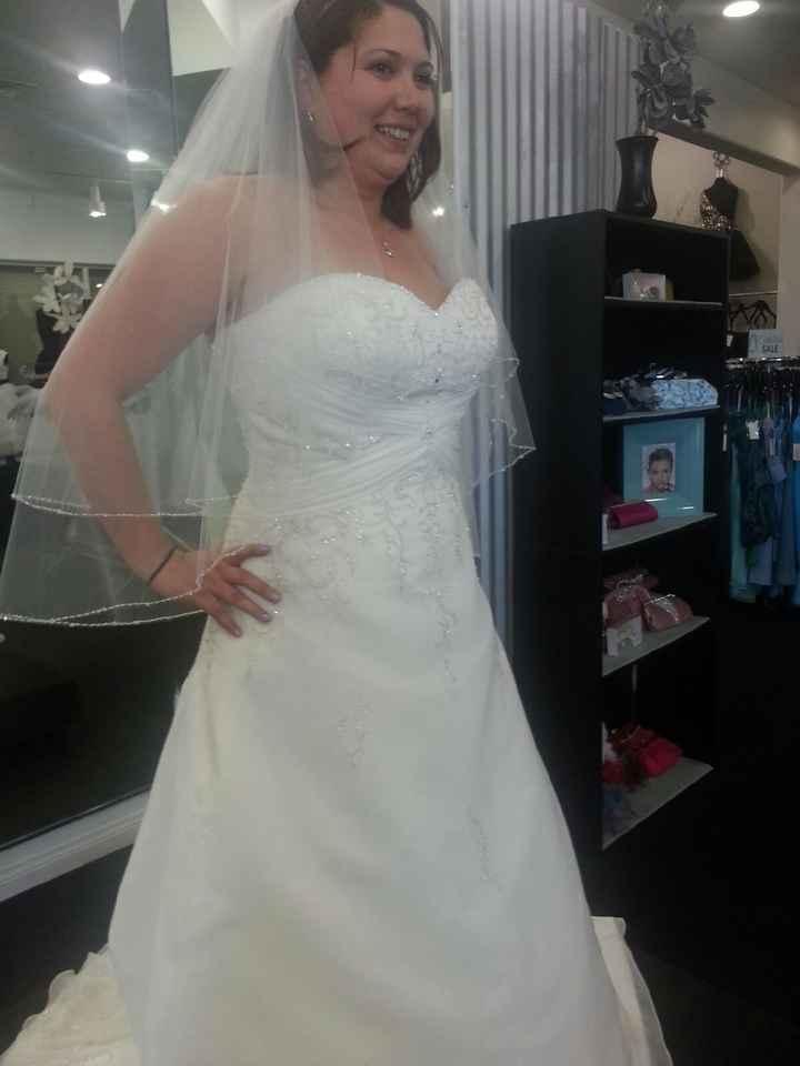 Fit N Flare Or Ball Gown Weddings Planning Wedding Forums Weddingwire