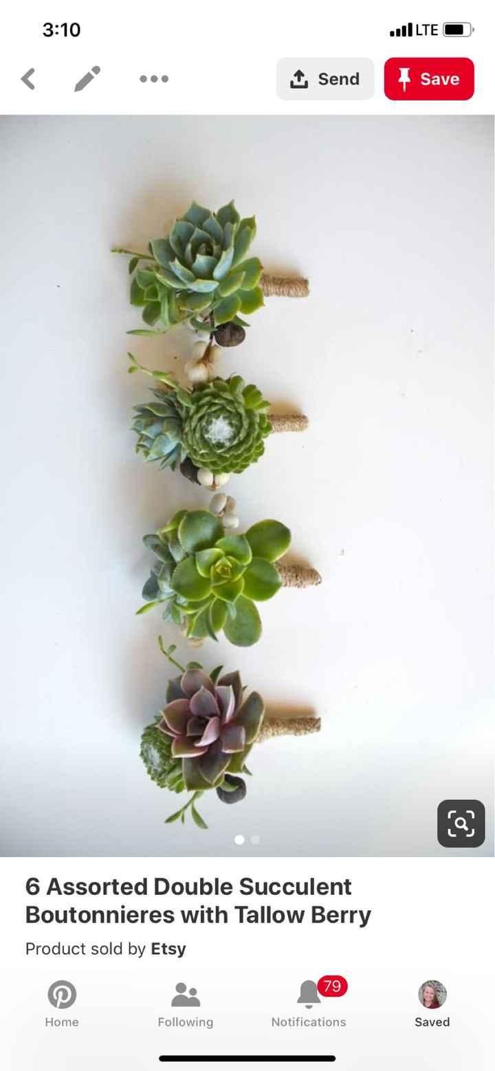 Succulent - 1