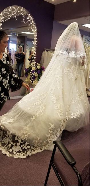 Long veils 2