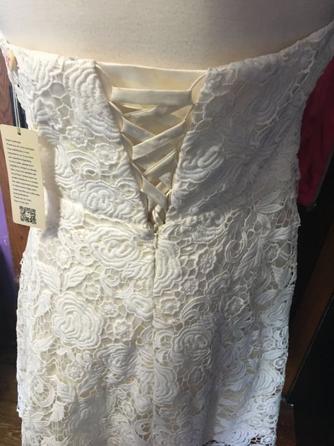 Second thoughts on non traditional wedding dress 3