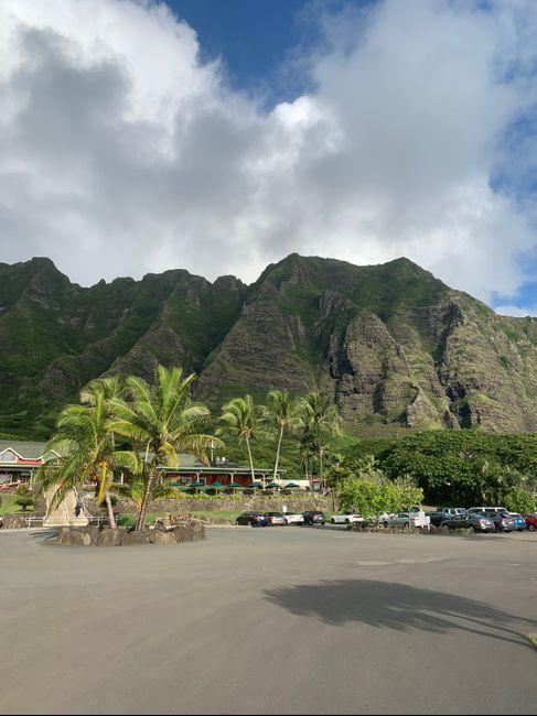 a Hawaiian Honey Moon! - 1