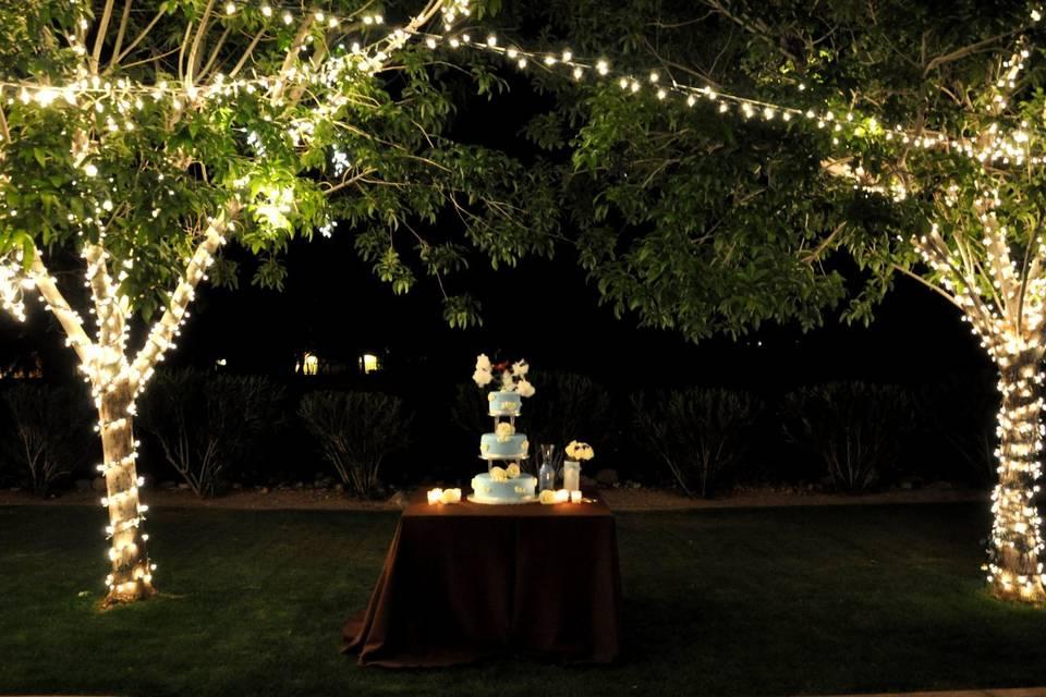 Crazy Daisies Flowers & Weddings