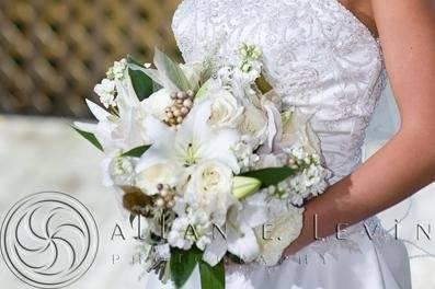 Bridal beauty - Allan E. Levine Photography
