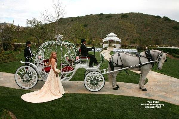 Enchanted Carriages