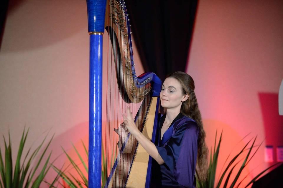 Dr. Vanessa Fountain, Harpist