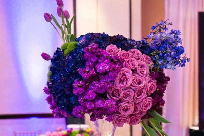 Breathtaking color scheme