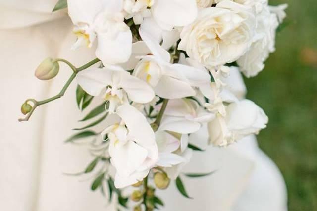 Lane and Lenge Florists