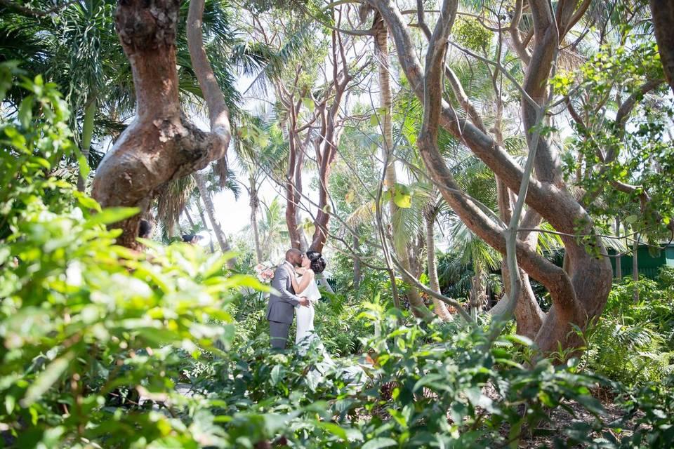 Lush Tropic Photo Opps