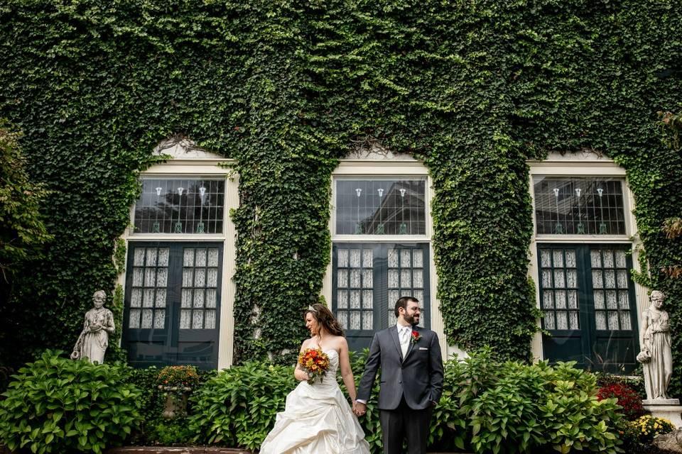 Ivy and windows