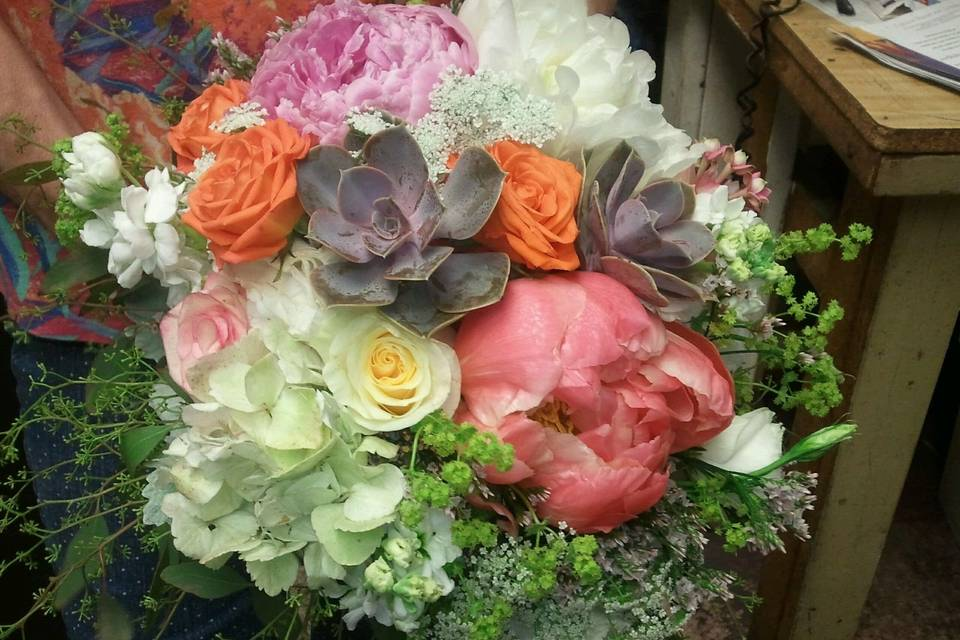 Schweizer & Dykstra Beautiful Flowers