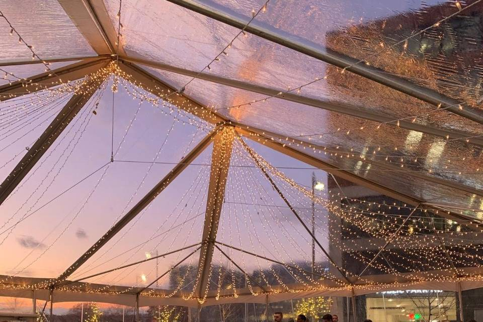 Clear Tent with Twinkle Lights