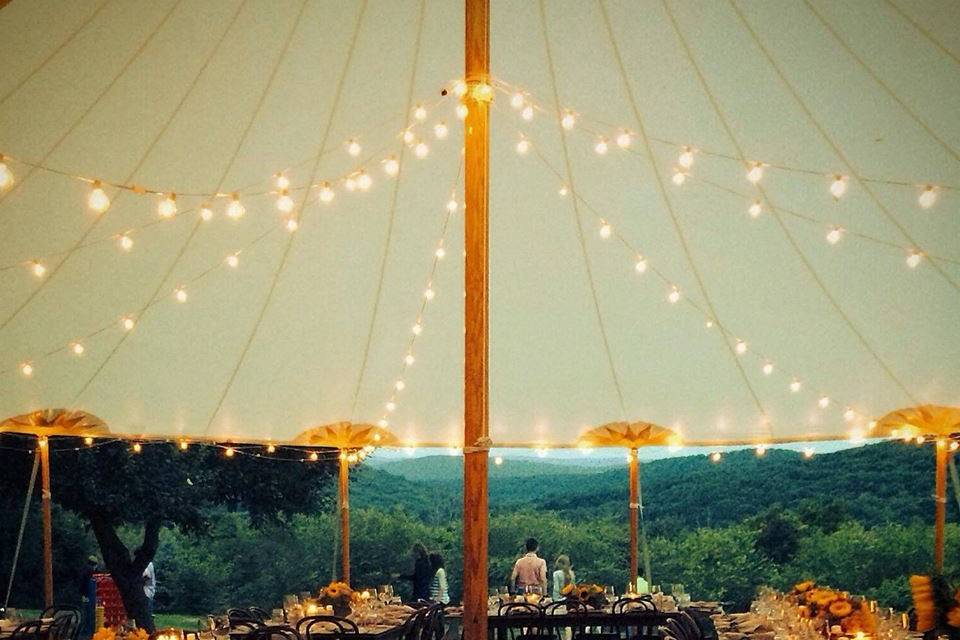 Pretty lights