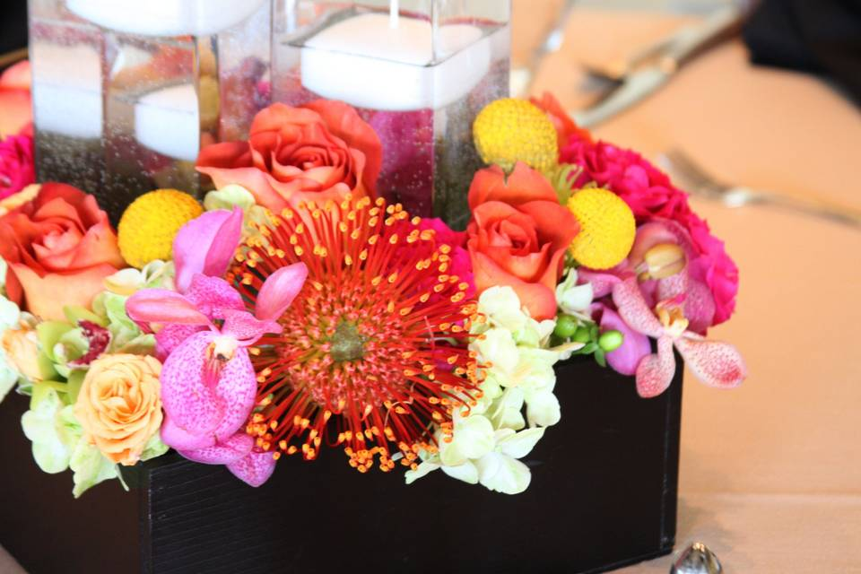 Whimsey Florals