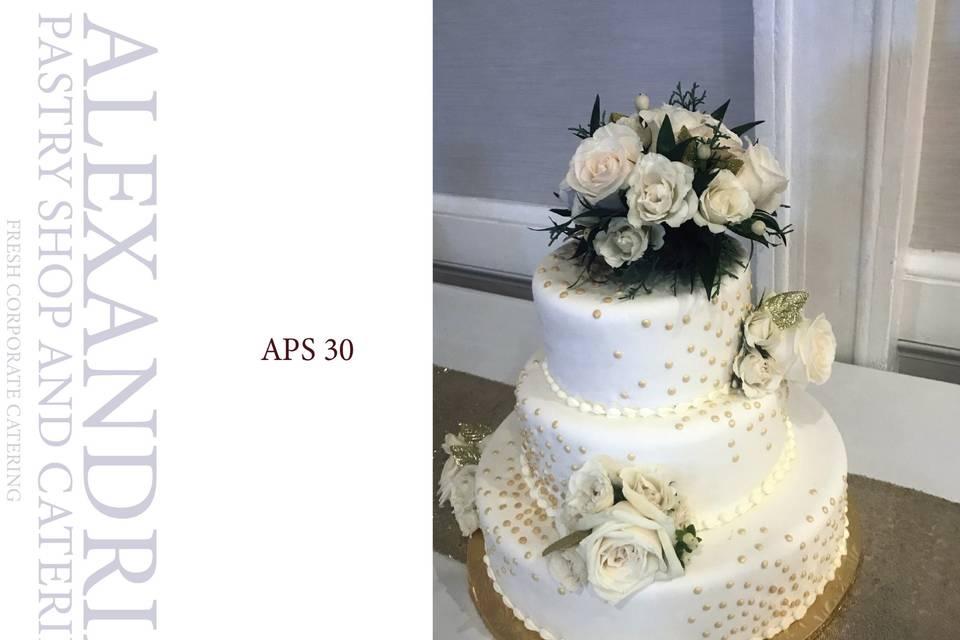APS 30