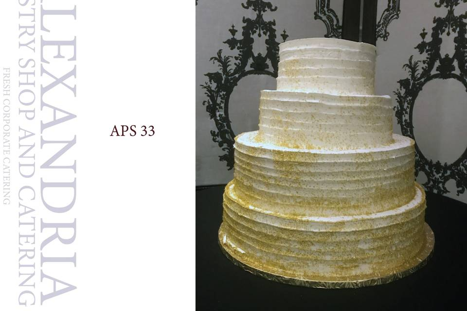 APS 33