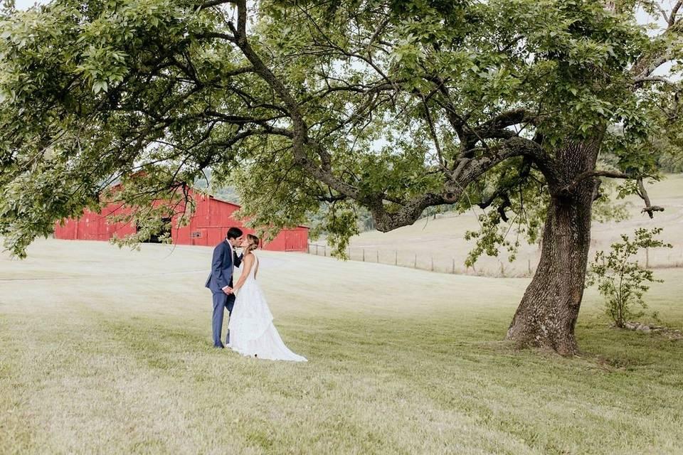 Magnolia Farms