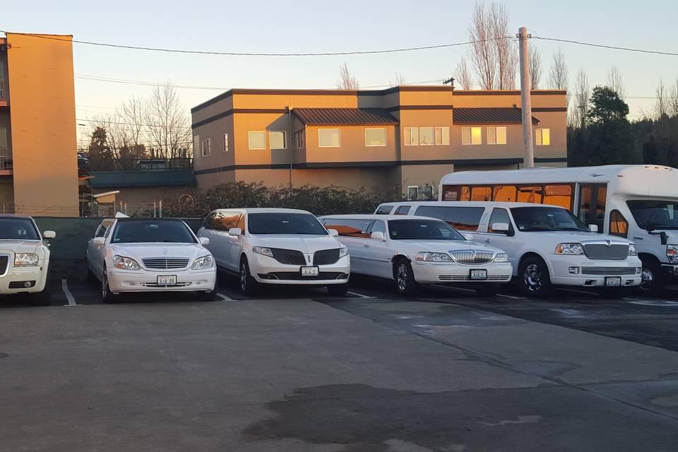 Fleet in white