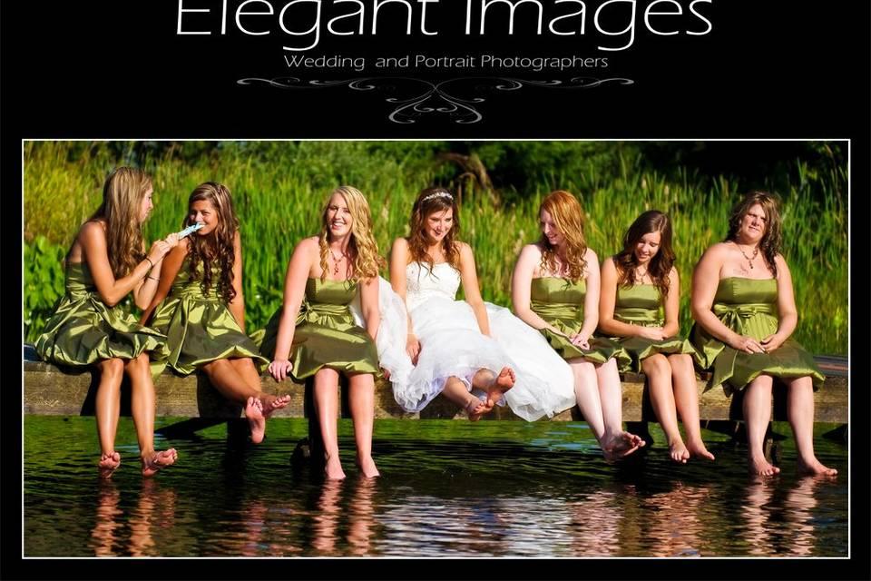 Elegant Images - Seattle Wedding Photographers