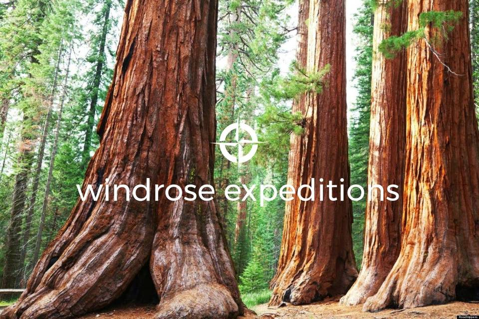 Windrose Expeditions