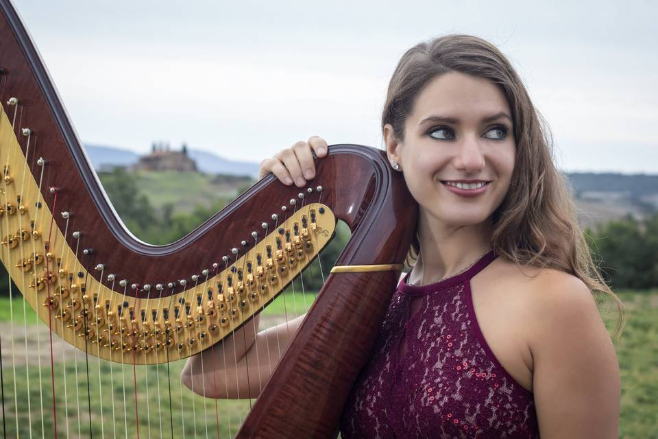 Harpist in the Bay Area