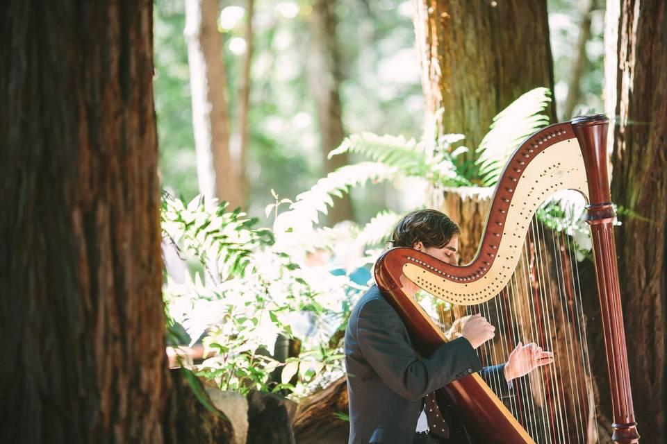 Outdoor performance - Stephan Haluska Harp