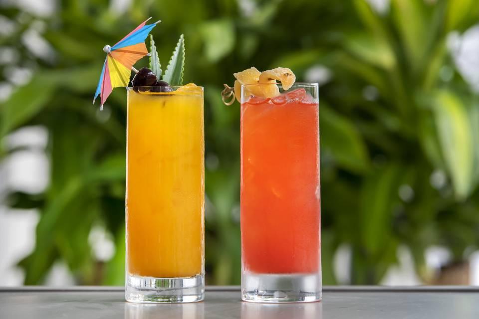 Sunshine Cocktails