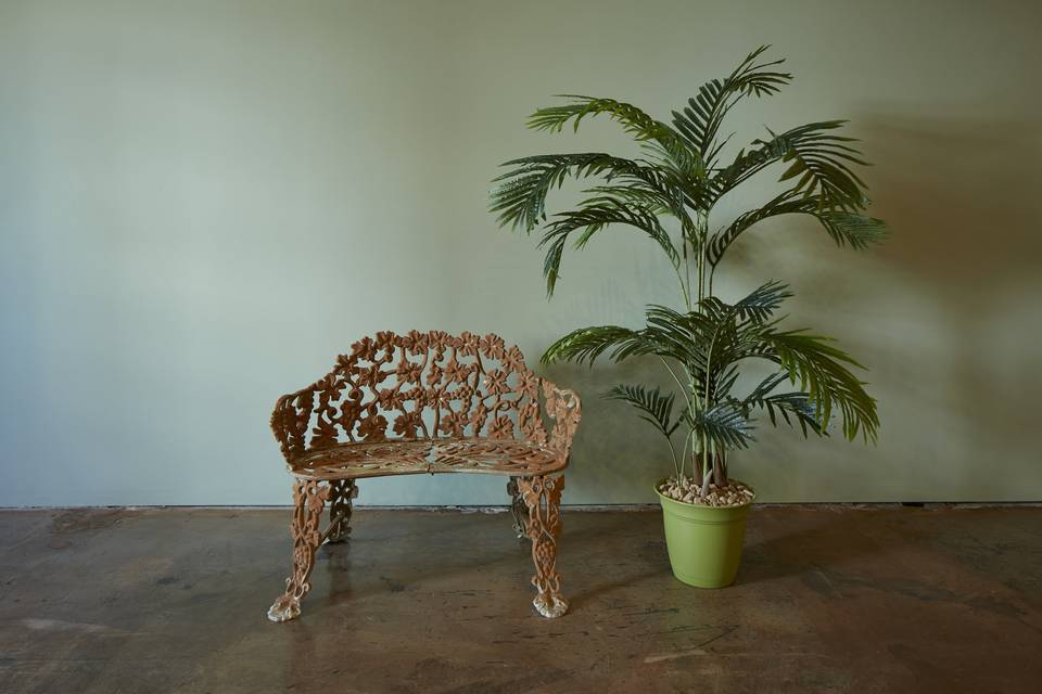 Vintage bench with large plant