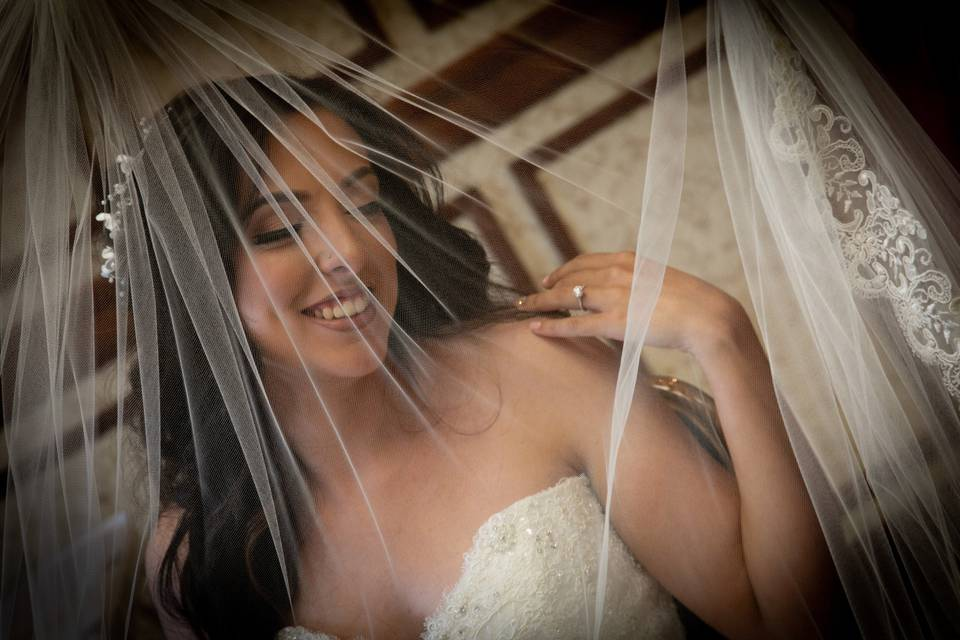 Abacus Studios Photography and Video