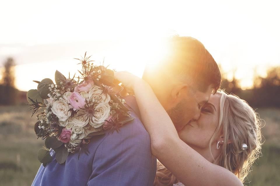 Kiss in a field
