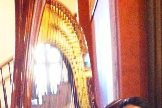 Harpist and Soprano, Leah Jorgensen