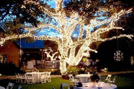 Noel Christmas/Wedding Light Professional, Inc.