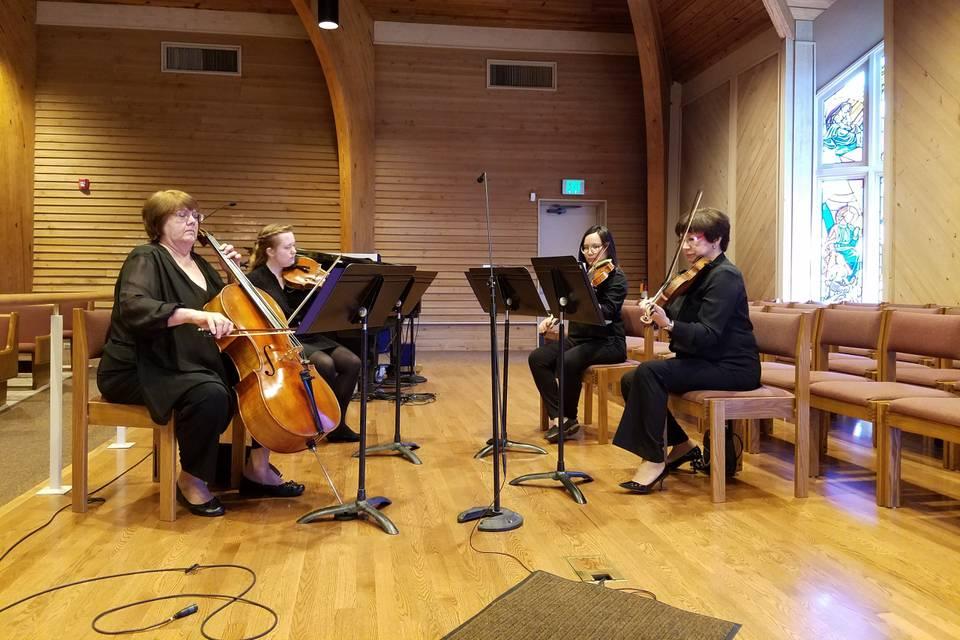Magic Strings Quartet