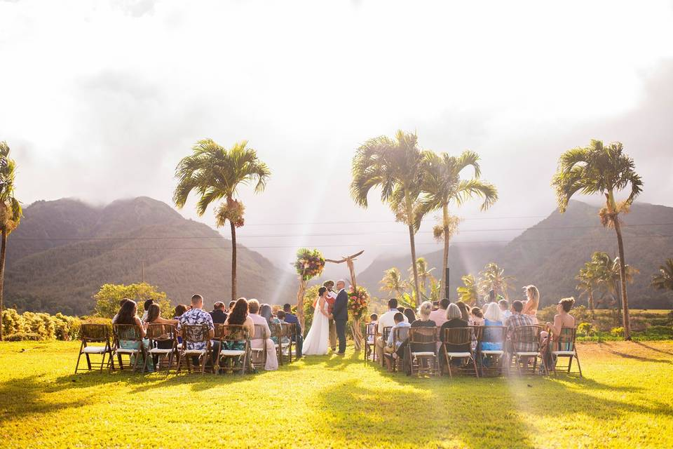 Maui Tropical Plantation Events