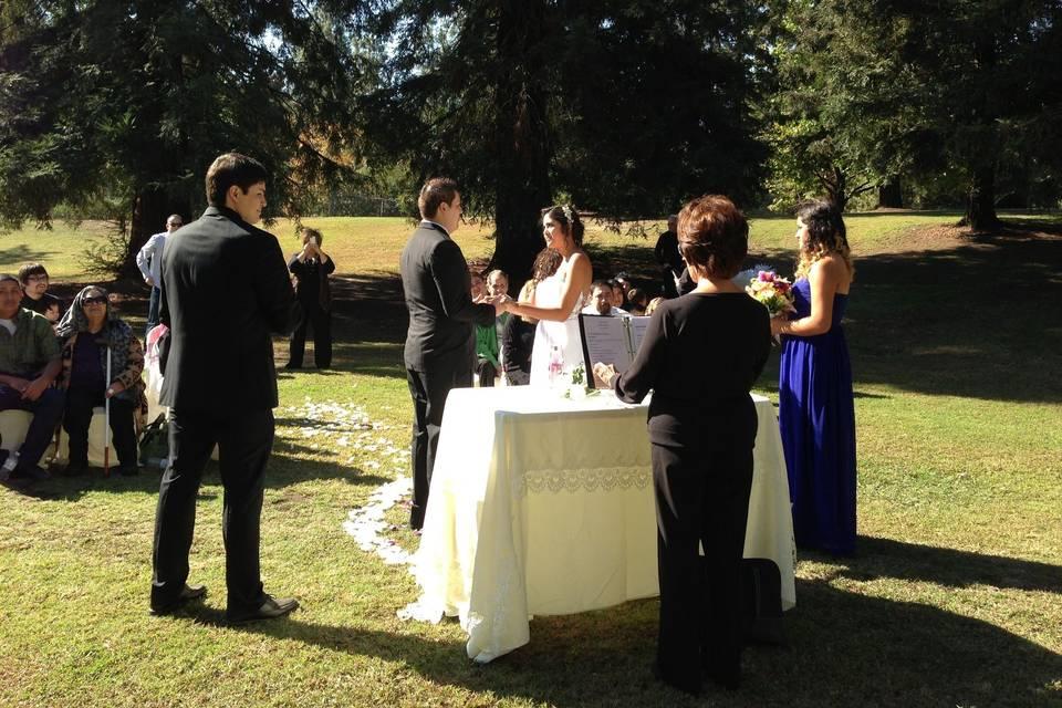 Above Talk Weddings