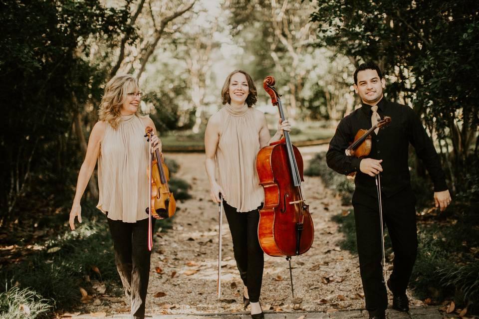 Vermilion Strings