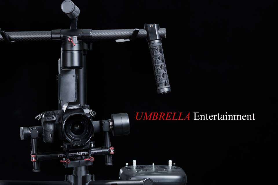 Wedding videography specialist