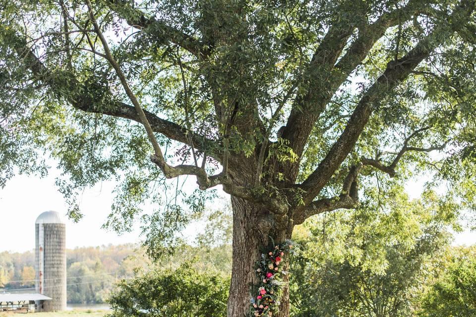 Shade Tree Ceremony Site