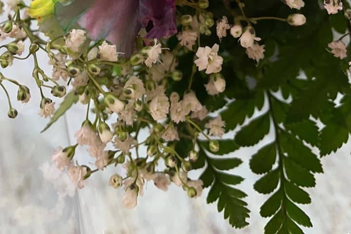 Mountaineer Florist & Gifts