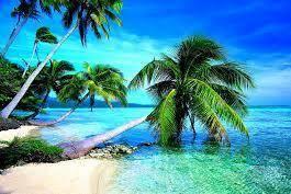 Aloha, Seven Seas Travel
