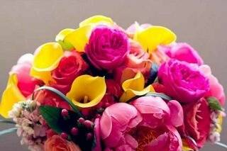 Bright pinks and yellows