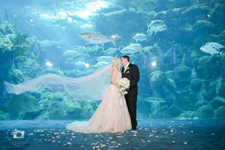Coral Reef Ceremony
