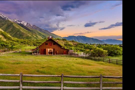 Quiet Meadow Farm