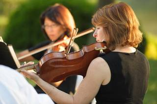 The Rosewood Ensemble