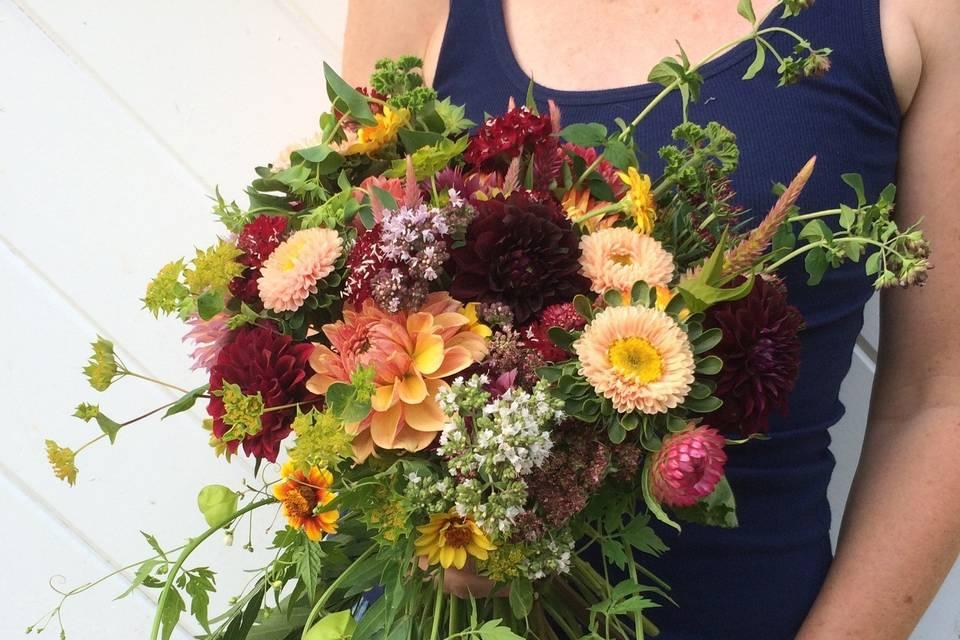 aster b. Flowers & Flower Farm