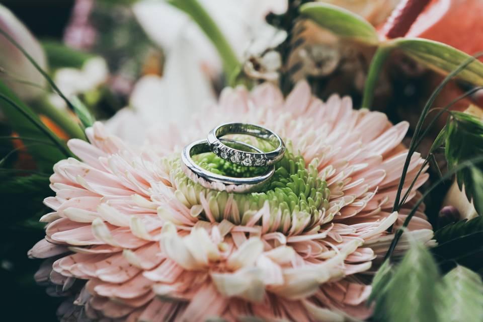 Ring along
