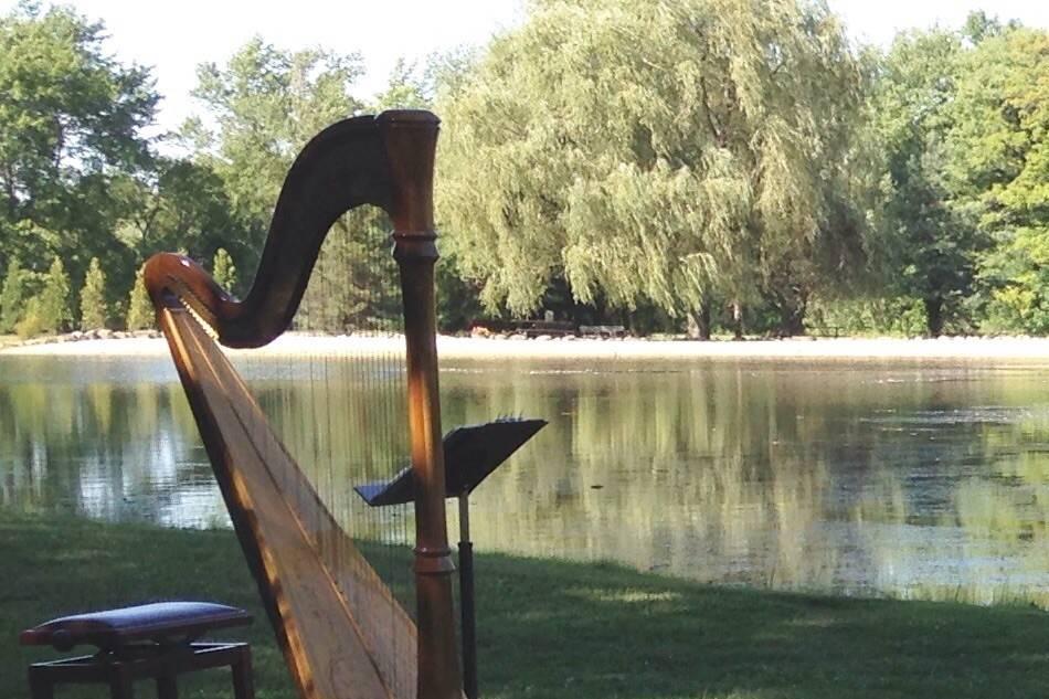 Debbie Beck's harp